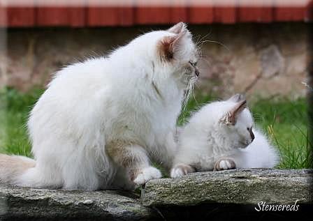 Frans med mamma Tova