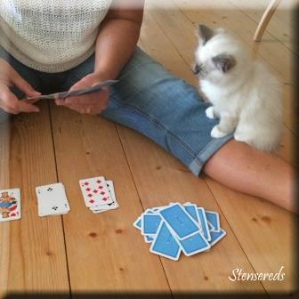 Gamina är gärna med och spelar kort!